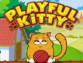 Kedi Oynat