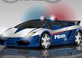 Polis Baskını
